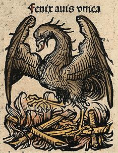 El ave Fénix en Las Crónicas de Nuremberg.